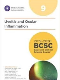American Academy of Ophthalmology (BCSC 9), Uveitis and lntraocular Inflammation, 2019-2020